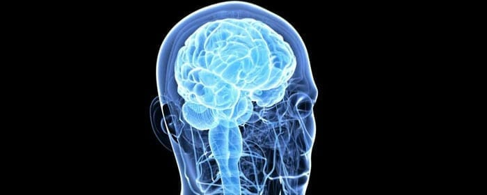Researchers Suggest A Way to Test the Safety of Stem Cell Therapy in Progressive Supranuclear Palsy
