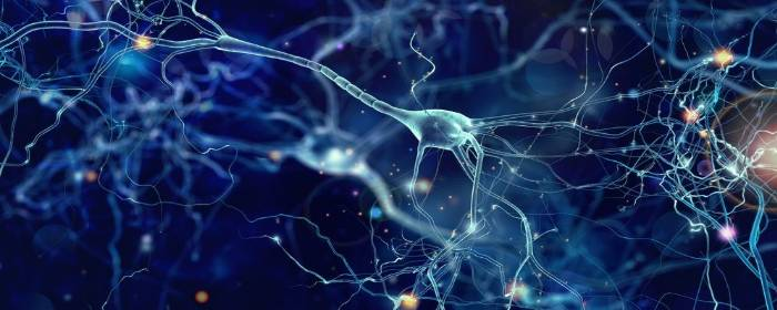 Parkinson's Disease May Go Beyond Just Dopamine