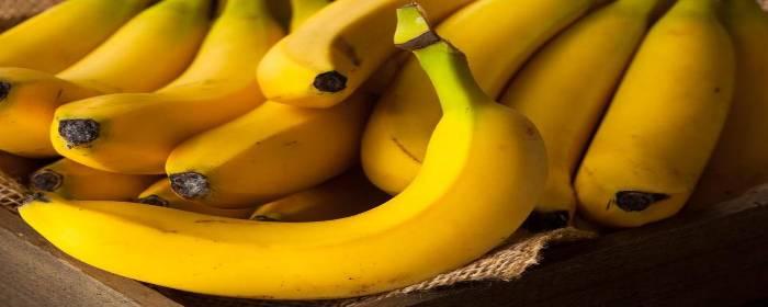 Why Is Potassium Important