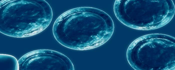 Umbilical Cord Mesenchymal Stem Cells Show Promise in Treatment of Multiple Sclerosis