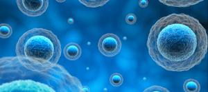 Stem Cell Therapy for ALS