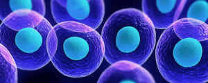 Stem Cell Therapy for Age Management