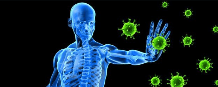 Mesenchymal Stem Cells Can Modulate the Immune System