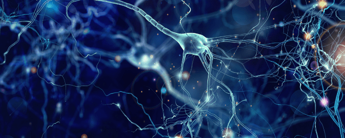 5 Ways to Promote a Healthy Nervous System