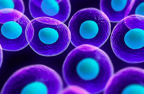 Stem Cell Facts: What They Are & What They Do