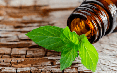 The Health-Boosting Properties of Peppermint Oil