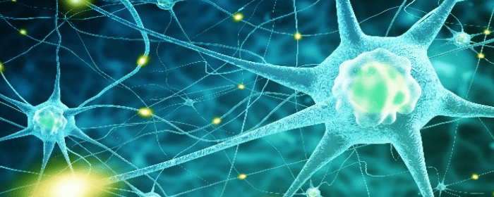 Possible Stem Cell Treatment for ALS Headed to Phase 3 Trial