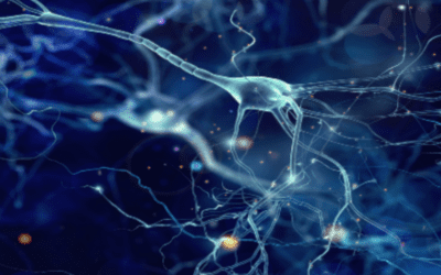 A Guide to Stem Cell Therapy for Neurodegenerative Diseases