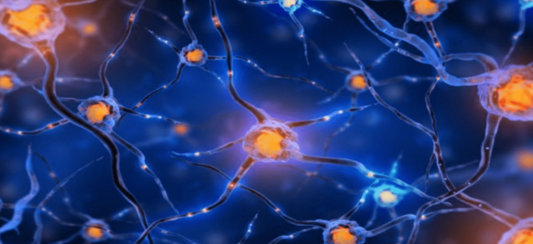 Can Stem Cells Treat Neural Damage Caused by Multiple Sclerosis?