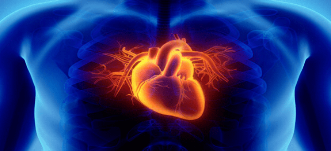 How Does Stem Cell Therapy Help Coronary Artery Disease?