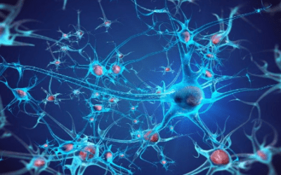 Stem Cell Therapy for ALS: Results From an Early Phase Clinical Trial